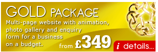 Gold Web Design Package