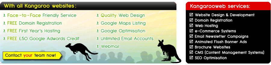 Services offered by Kangaroo Web